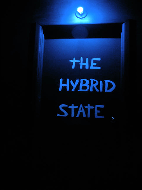 The Hybrid State